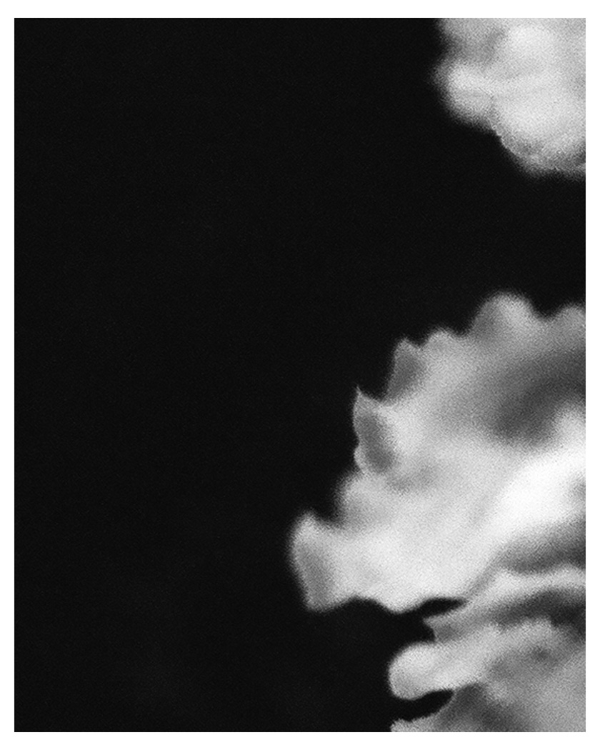 and then my heart stopped (darkroom print)